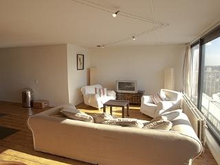 Weena - Zuid-Holland vacation rentals