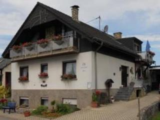 Vacation Apartment in Mehring (Rhineland-Palatinate) - 377 sqft, comfortable, natural, winery (# 3979) - Mehring vacation rentals