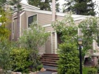 Forest Pines On My Mind ~ RA3596 - Image 1 - Incline Village - rentals
