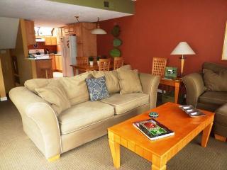 95,Seapines,pool,golf disc,wifi,bikes,pet ok,tennis - Hilton Head vacation rentals