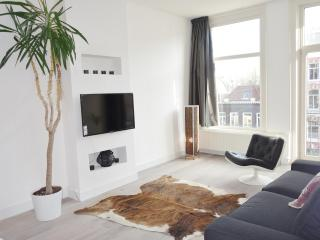 Stylish, central, just renovated 2b by Vondelpark - Amsterdam vacation rentals