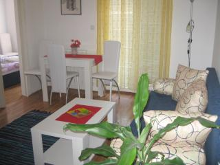 Mum's  Flat in Belgrade - Belgrade vacation rentals