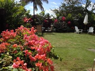 Beautifully landscaped - Honeymooners, Small Families, 1 minute to beach! - Ewa Beach - rentals