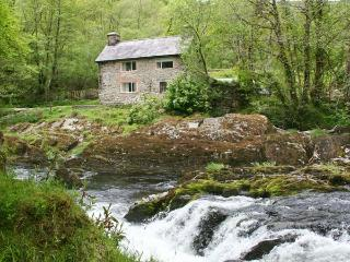 PEN Y BONT, pet-friendly riverside cottage, beams, woodburner, ideal touring base, Mallwyd Ref 25712 - Aberdovey / Aberdyfi vacation rentals