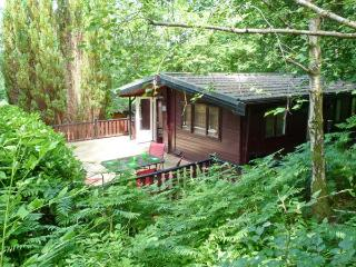 TOP LODGE, on-site facilities, pets welcome, great touring base, near Windermere, Ref. 26654 - Lake District vacation rentals
