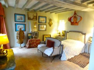 In the Loire Valley, a Magnificently Restored Guest House in Chateau Country; Sleeps 4 in La Petite - Ligre vacation rentals