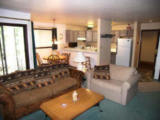 Flying Dutchman ~ RA4180 - Keystone vacation rentals