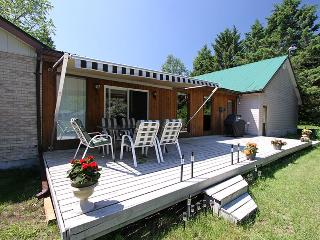 Cozy Cottage with Deck and A/C - Huntsville vacation rentals