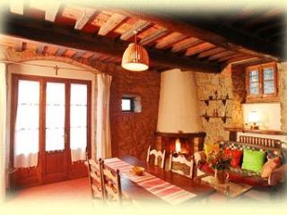 Cortona, Fattoria Tecognano Farm House Apartment-S - United States vacation rentals