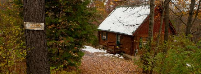Main view of Cabin during Winter time - Secluded, Pet-Friendly, Relaxing Log Cabin (Wifi) - Berkeley Springs - rentals