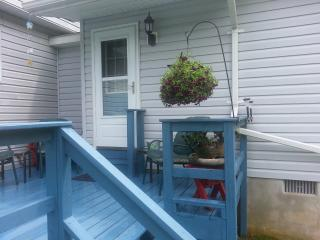 Gorgeous 1 bedroom Jim Thorpe House with Deck - Jim Thorpe vacation rentals