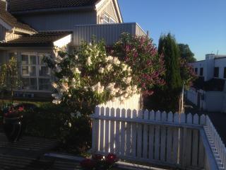 Leilighet i villa ved sjøen, idylliske Son havn. - Son vacation rentals
