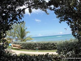 Surfers Point Guest House - Almond 2 Bedroom - Christ Church vacation rentals