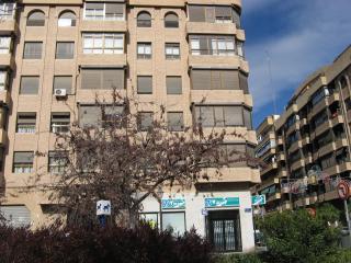 Junto a La Ciudad de las Artes y las Ciencias - Valencia vacation rentals