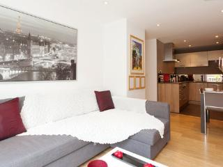 Amazing New Gated Apartment in Kings Cross Central - London vacation rentals
