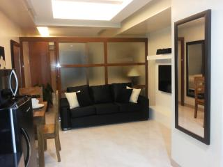 Stunning Makati Fully Furnished 1 Bedroom - National Capital Region vacation rentals