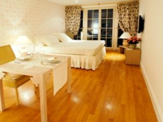 The Hoover Room at Palais Kraft - Zurich vacation rentals