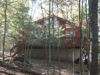 Comfortable House with Deck and Internet Access - Lackawaxen vacation rentals