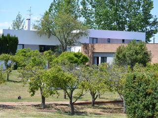 Quiet spa and trendy villa in Alentejo Portugal - Vendas Novas vacation rentals