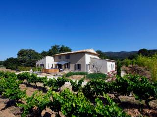 Charming B&B sud Luberon in Vineyards, with a Pool and Balcony - Puyvert vacation rentals