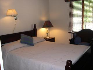 Honeymoon Suite - San Antonio De Belen vacation rentals