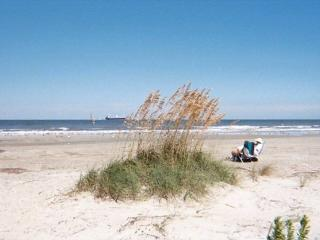 Lighthouse Point Rental 34A - Tybee Island vacation rentals
