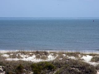 Lighthouse Point Rental 19C - Tybee Island vacation rentals