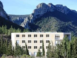 Beautiful Apartment with views of the Vines and Mountains - Saint-Paul-de-Fenouillet vacation rentals