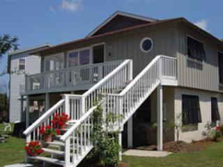 Beach House on Tybee 9 Rose up - Image 1 - Tybee Island - rentals