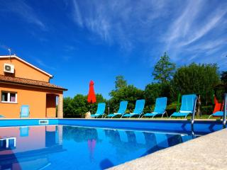 Beautiful Motovun vacation Villa with A/C - Motovun vacation rentals