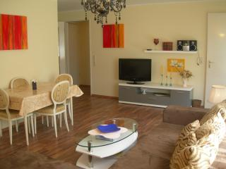 The cosy flat in a lovely city near big city Stuttgart - Metzingen vacation rentals