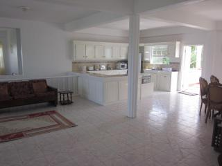 Spacious 3 Bedroom Villa with Roof Terrace - Vieux Fort vacation rentals