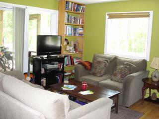Cozy and clean in Gt Barrington- 1 week in summer! - Great Barrington vacation rentals