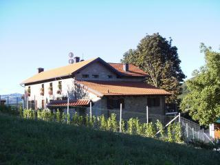 Agriturismo Bosco della Luja - Province of Asti vacation rentals