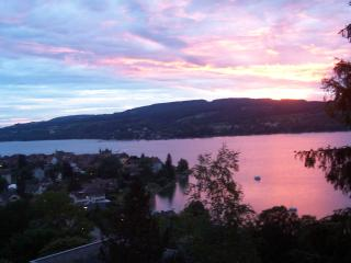 Panoramic View of Lake Constance - Steckborn vacation rentals