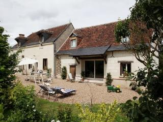3 bedroom House with Internet Access in Berthenay - Berthenay vacation rentals