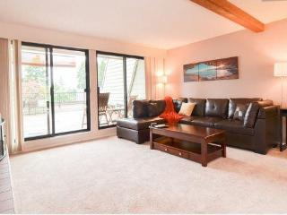 Bright and spacious 2bed Condo fully furnished - Redmond vacation rentals