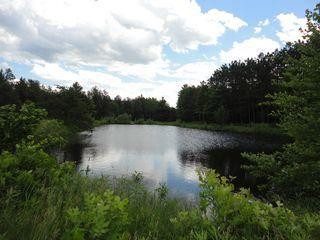 Sand bottom pond on trail - Single Cabin on 120 Arces with Pond near Dells - New Lisbon - rentals