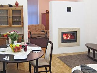 Elegant Fireplace Holidays, downtown, free WiFi! - Hungary vacation rentals