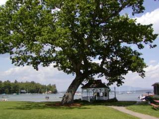 Lake Winnipesaukee Waterfront 2 BR in Gilford, NH - Alexandria vacation rentals