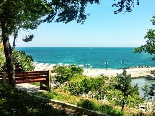 Seaview Duplex in beautiful Pomorie - Pomorie vacation rentals