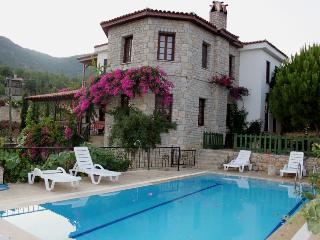 Stone villa with breath taking views, pool, wi-fi - Aegean Region vacation rentals