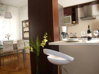 ATRIUM PLAZA ZAGREB-main square - Zagreb vacation rentals