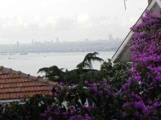 Charming Istanbul House rental with Internet Access - Istanbul vacation rentals