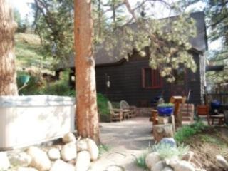 Carver's House - Carvers House - Estes Park - rentals