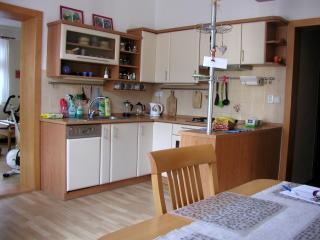 Lovely 3BD house in Brno ♫♪ nearby the Brno lake ♫ - Moravia vacation rentals