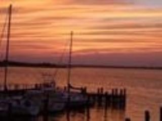 301 Alder Lane 124930 - Image 1 - Ocean City - rentals