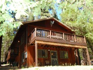 (1S) Cecil's Cabin - Yosemite Area vacation rentals
