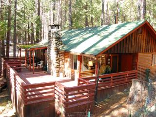 Nice 2 bedroom House in Wawona with Television - Wawona vacation rentals