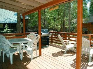 Beautiful House with Television and DVD Player - Wawona vacation rentals
